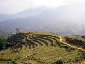 Landscape_in_Sa_Pa_(Vietnam)